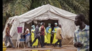 Some Ebola outbreak problems, obstacles were avoidable: Associated Press